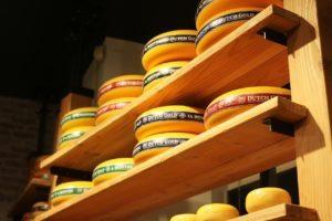 GO Dutch Holland cheese