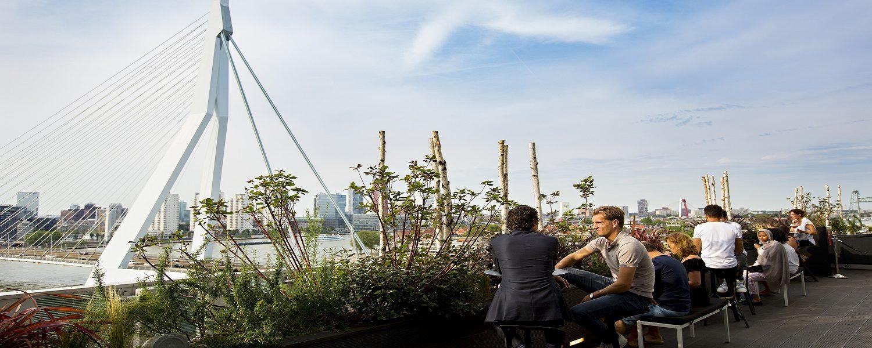 GO Rotterdam Food Tour GO Dutch Travel